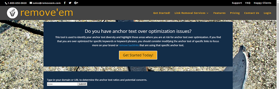 Anchor Text Over Optimization Report