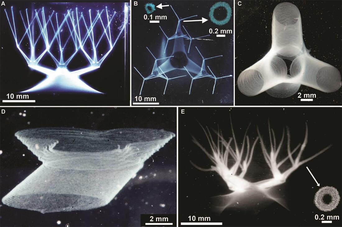 Pembuluh darah 3D