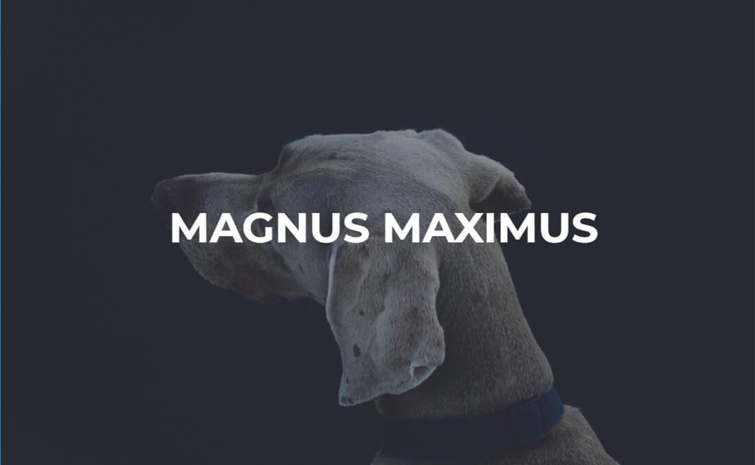 1. Magnus