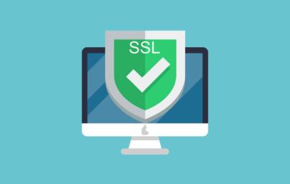 733 SSL Adalah