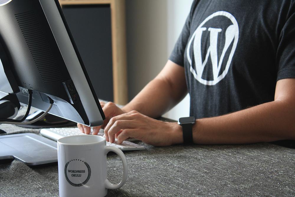 menjual plugin dan template wordpress