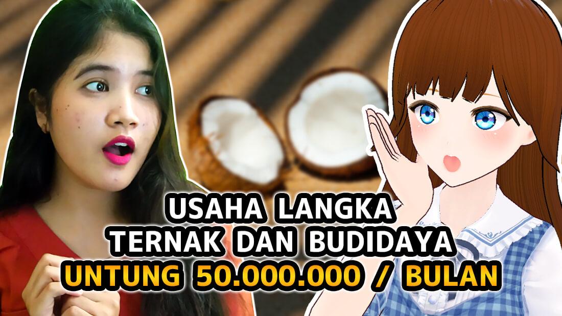Omzet Rp 50 000 000 Bulan Usaha Langka Yang Menguntungkan Mulai Dari Ternak Hingga Budidaya Peluang Bisnis 2020 Markey